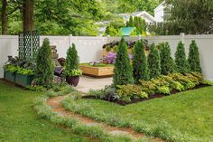 Let's talk entertainment. Next year is going to be the year for outdoor celebrations. We want to help you create a place for your 2021 of fun and joy. Starting with some hedge plants to create some privacy and or to fill some unwanted wholes in your gardens. #backyardgarden #backyardentertaining #privacyfence #hedgeplants #gardeningismytherapy
