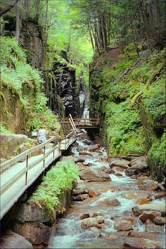 The Flume Gorge - Franconia Notch State Park, New Hampshire