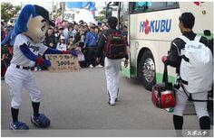 プロ野球 ― スポニチ Sponichi Annex 野球  (via http://www.sponichi.co.jp/baseball/news/2014/02/23/gazo/G20140223007651140.html )