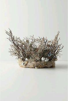 """Is it a nest ? Is it a crown?   It's a """"Crest""""!"""
