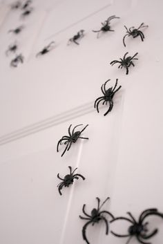 magnetic spiders DIY for #halloween