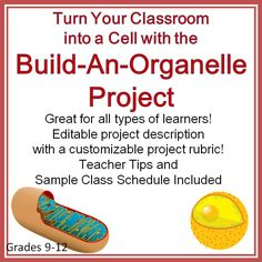 Great classroom project!  Students work in groups to build organelle structures to hang around the classroom.  My students love this project and it really helps build community within the classroom in the first 1/4 of the school year.  For Grades 9-12.
