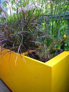 file cabinet planter
