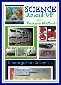Science for Young Children, Preschool + Kindergarten Experiments + Experiences (RoundUP via RainbowsWIthinReach)