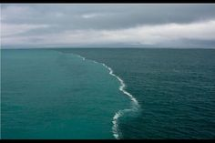 Examining 'the place where two oceans meet' in the Gulf of Alaska | Alaska Dispatch