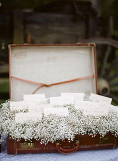 Beautiful idea for escort cards at a wedding.... an old suitcase and babys breath!