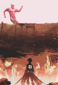 Can't stop laughing... (Shingeki no Kyojin) Click for GIF.
