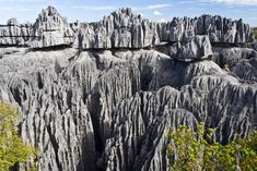 limestone formations in Tsingy de Bemaraha, a natural reserve on the western coast of Madagascar