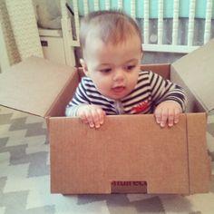 FreshDirect Delivery! freshdirect deliveri, freshdirect box