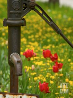 Water Pump in Znojmo, Czech Republic Photographic Print by Russell Young