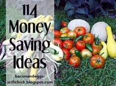 "114 Money Saving / Frugal Ideas some of these are a little ""extreme"", but worth the read!"