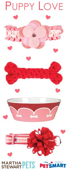#MarthaStewartPets Valentine's Day gift ideas. Exclusively at #PetSmart