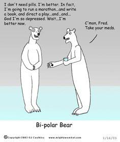 Meet my new power animal: the Bipolar Bear.