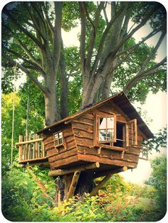 This reminds me of my cousins tree house we used to go in- childhood memories :)