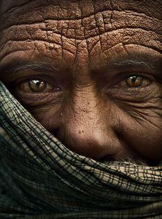 Soulful golden eyes of wisdom