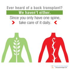 Ever heard of a back transplant? Neither have we. Since you only have one spine, take care of it by getting checked regularly!