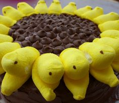 A box of Better Crocker yellow cake mix to form two 8 inch round cakes, two packages of yellow Peeps, two tubs of chocolate icing and a bag of milk chocolate chips to create this sunflower Peep cake
