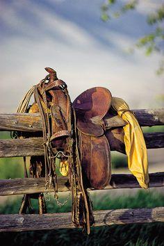 Old Saddle...