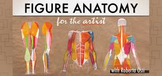 Learn to Draw a Human Figure in: Figure Anatomy for the Artist