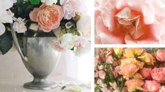 6 Ways to Keep Your Flowers Fresh Longer