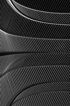 The pattern of lines.