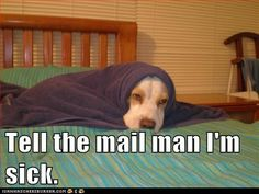 Tell the mailman....