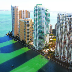 T+L road-tripped from coast to shimmering coast—starting in #Miami—to unearth the ultimate #Florida escapes.