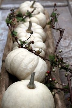 Love the White Pumpkins. Simple Elegant Centerpiece.