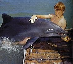 Flipper TV show 1960's- fell in love with dolphins and I can still remember the theme song even after all these years