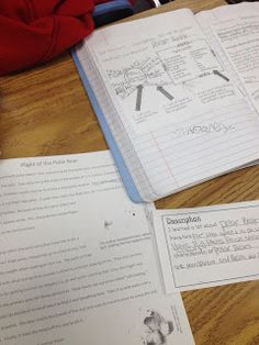 Writing using text structures resource.