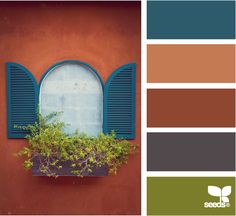 ✮ Color Window - Bold