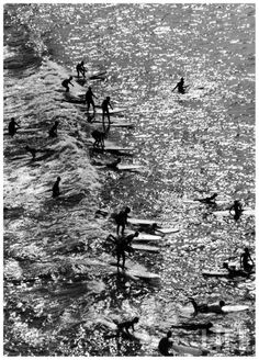 Surf riders surfing 1961 Malibù by Allan Grant