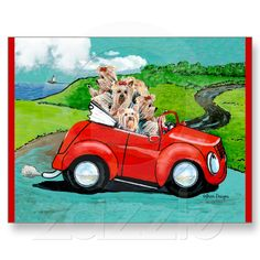 Yorkies in Red Convertible Postcards from Zazzle.com
