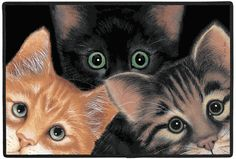 Peeping Toms Cat Outdoor Doormat 100% Polyester face, permanently dye printed & fade resistant, non-skid rubber backing, durable polypropylene web trim. Art by Sue Hall Size: 27 x 18 Hand Made and Printed in the USA, by Fiddlers Elbow. Family Owned since 1973 Free shipping applies to US orders only. FEX29  $32.00