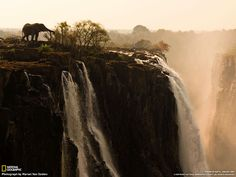 Victoria Falls-  I love that there is an elephant in the picture