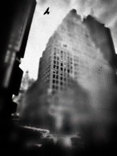 Take to the Sky / John Frenzel