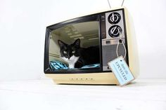 Upcycled Vintage Sanyo TV Cat Bed