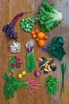 farmtot recip, garden