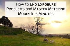 How To End Exposure Problems and Master Metering Modes in 5 Minutes - Photodoto