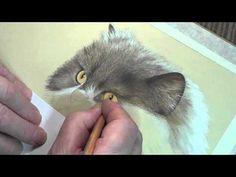 Persian Cat Speed Painting persian cats