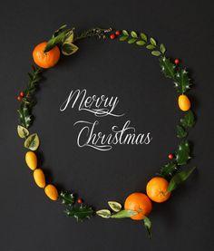 merry christmas!  (pomverte)