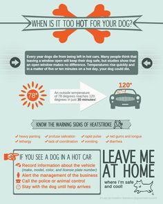 When is it TOO HOT for your DOG?  (printable version of infographic by Leg Up Creative Solutions)