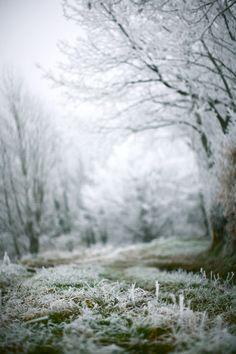 pinterest.com/fra411 #explore #outdoor -