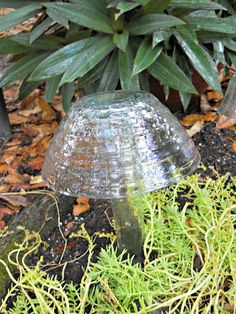 Glass mushroom glass mushroom