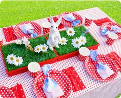 picnic party...