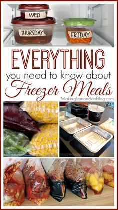 EVERYTHING you need to know about freezer meals! This is a huge collection of tips, recipes, etc. from bloggers. @MakingLemonadeBlog