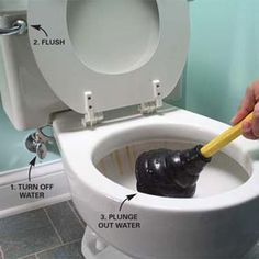 Remove toilet bowl stains