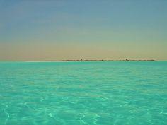 Ashmore Reef