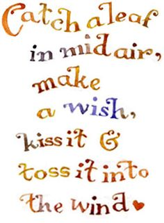 catch a leaf in mid air, make a wish, make a wish, kiss it & toss it into the wind <3