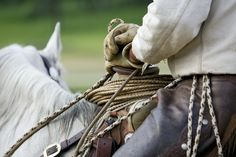 How to Choose Gloves for Horseback Riding and Working With Your Horse